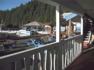 Lodge dock view